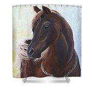Arabian Prince Shower Curtain