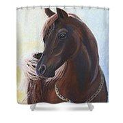 Arabian Prince Shower Curtain