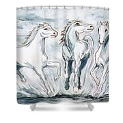 Arabian Roots Shower Curtain