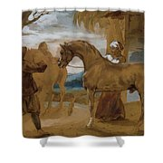 Arabian Stallion Led By Two Arabians To Breed Shower Curtain