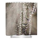 Arachne's Beads Shower Curtain