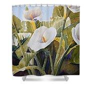 Aram Lillies Shower Curtain