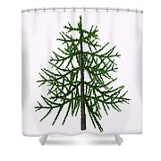 Araucaria Sp Tree Shower Curtain