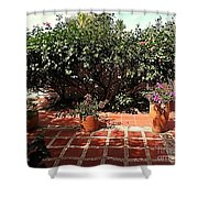 Arboletes 2 Shower Curtain