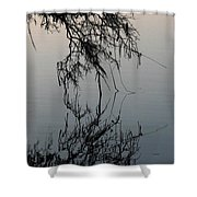Arbor Reflections Shower Curtain