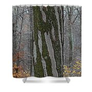Arboreal Design Shower Curtain
