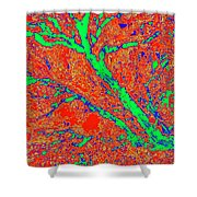 Arboreal Plateau 15 Shower Curtain