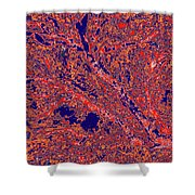 Arboreal Plateau 26 Shower Curtain