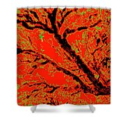 Arboreal Plateau 8 Shower Curtain