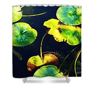 Arboretum Morning Shower Curtain