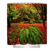 Arboretum Primary Colors Shower Curtain