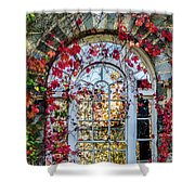Arch And Red Vines Shower Curtain