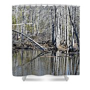 Arch And Reflections Shower Curtain