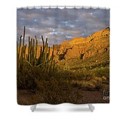 Arch Canyon 3 Shower Curtain