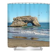 Arch In The Sea With Pelicans Flying By, At Natural Bridges State Beach, Santa Cruz, California Shower Curtain