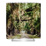 Arch Of Oaks - Evergreen Plantation Shower Curtain
