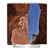 Arch Sliver Shower Curtain