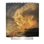 Archangel  Shower Curtain