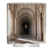 Arched And Elegant Shower Curtain