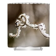 Arched Frosty Curlique Shower Curtain