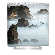 Arched Rock Sea Bird Shower Curtain
