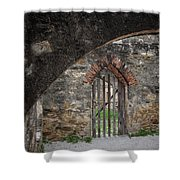 Arched Way Shower Curtain