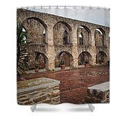 Arches And Arches Shower Curtain