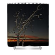 Arches Lone Tree At Dusk Shower Curtain