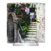 Archway And Stairs Shower Curtain