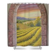 Arco Vinal Shower Curtain