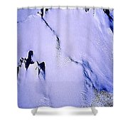 Arctic Fastness  Shower Curtain