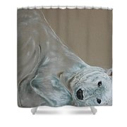 Arctic Frolic Shower Curtain