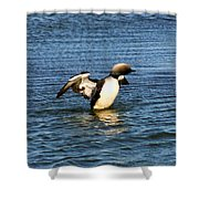 Arctic Loon Shower Curtain