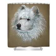 Arctic Majestry Shower Curtain