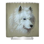 Arctic Serenity Shower Curtain