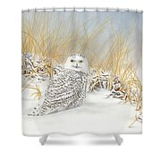 Are You Coming Or What? Shower Curtain
