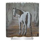 Are You Coming Shower Curtain