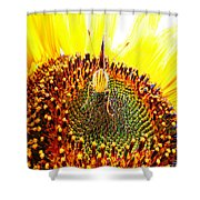 Are You Looking At Me - Butterfly Shower Curtain