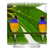 Are You Serious? Shower Curtain