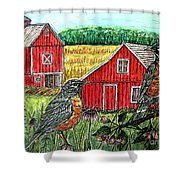 Are You Sure This Is The Way To St.paul? Shower Curtain