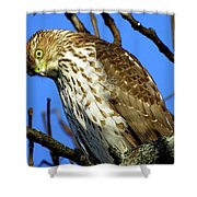 Are You Talkin' To Me? Shower Curtain