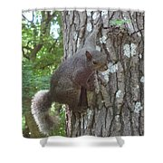 Are You Talking To Me? Shower Curtain