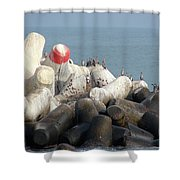 Arica Chile Sea Life Shower Curtain