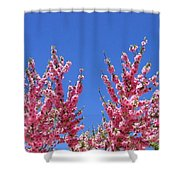 Arizona 3 Shower Curtain