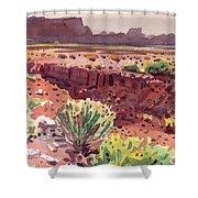 Arizona Arroyo Shower Curtain