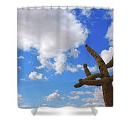 Arizona Blue Sky Shower Curtain