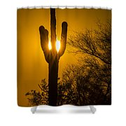 Arizona Cactus #1 Shower Curtain
