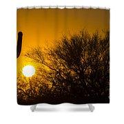 Arizona Cactus #2 Shower Curtain