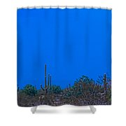 Arizona Desert Landscape  Shower Curtain