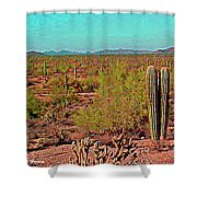 Arizona Desert Nice Place For A Walk Shower Curtain